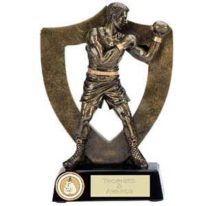 custom resin boxing souvenir sport trophy